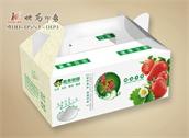 草莓水果包装